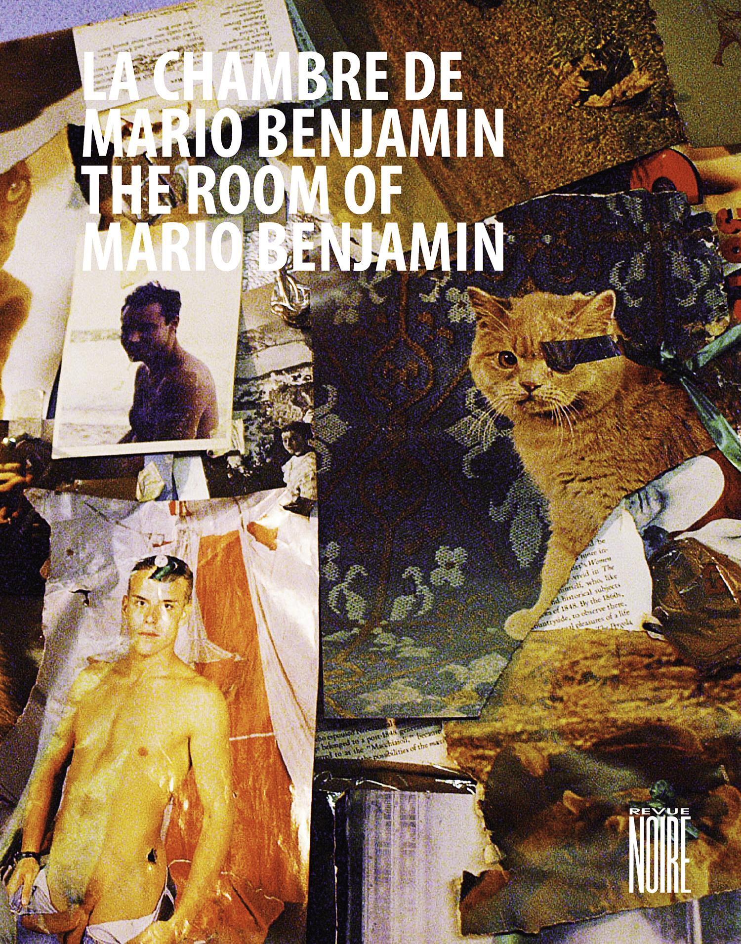 Livre 'La Chambre de Mario Benjamin' monographie, Revue Noire, 2012