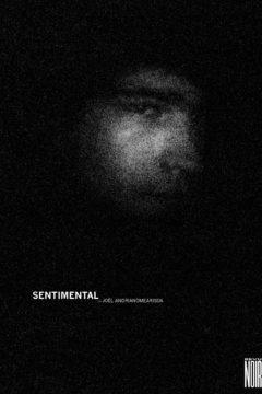 RevueNoire-Sentimental-Andrianomearisoa-000-COUV