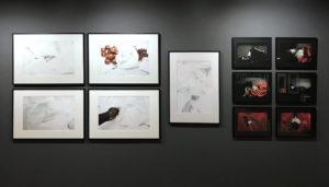 Les Abattoirs Toulouse, photographies de Alain Nzuzi polo